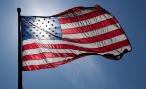 Three Nigerian-Americans Win in U.S. 2020 Elections