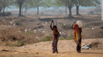 India's groundwater crisis threatens food security for hundreds of millions