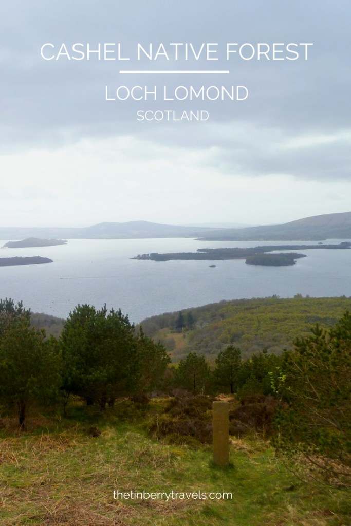 Loch Lomond has a lot of viewpoints to pick from but if you've not visited the Cashel Native Forest near Balmaha here's another one to add to your list!