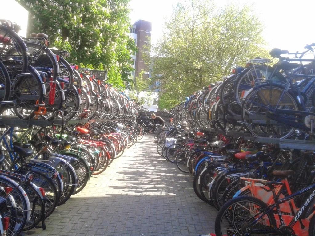 Bike racks in Leiden