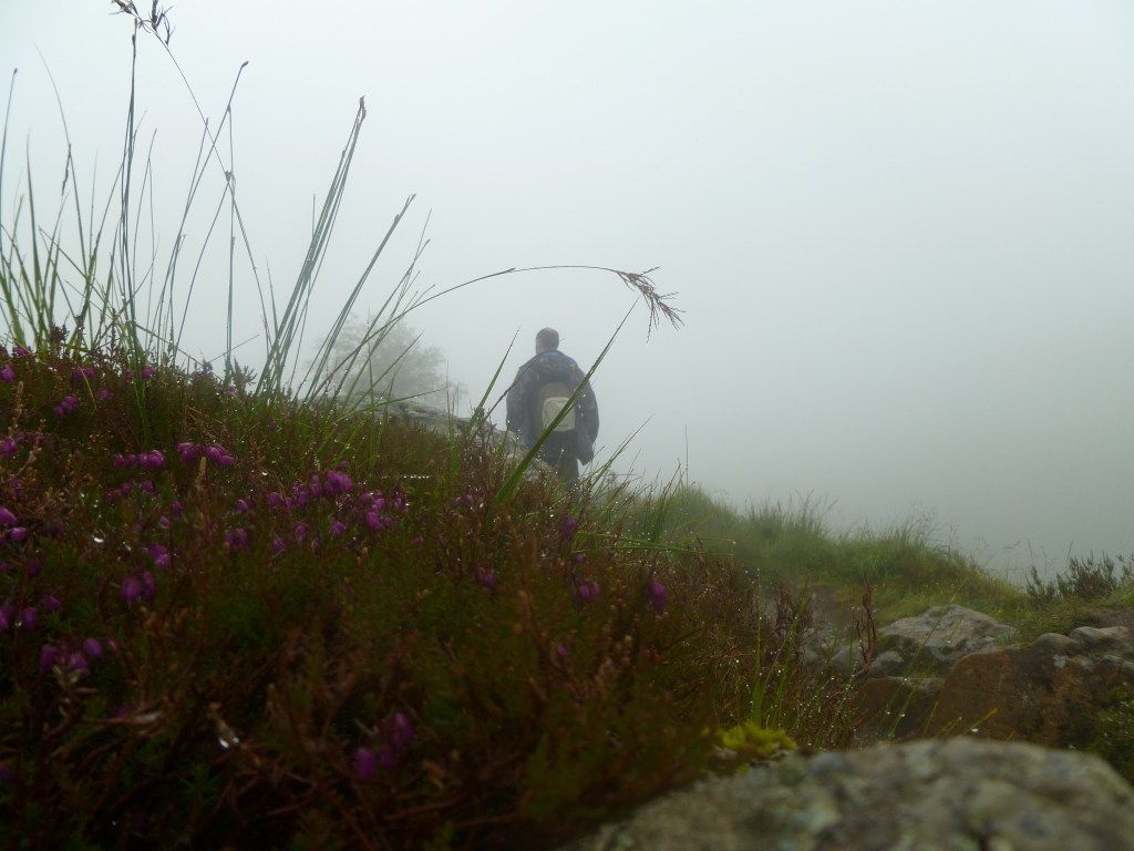 Spooky mist at Ben Arthur also known as The Cobbler