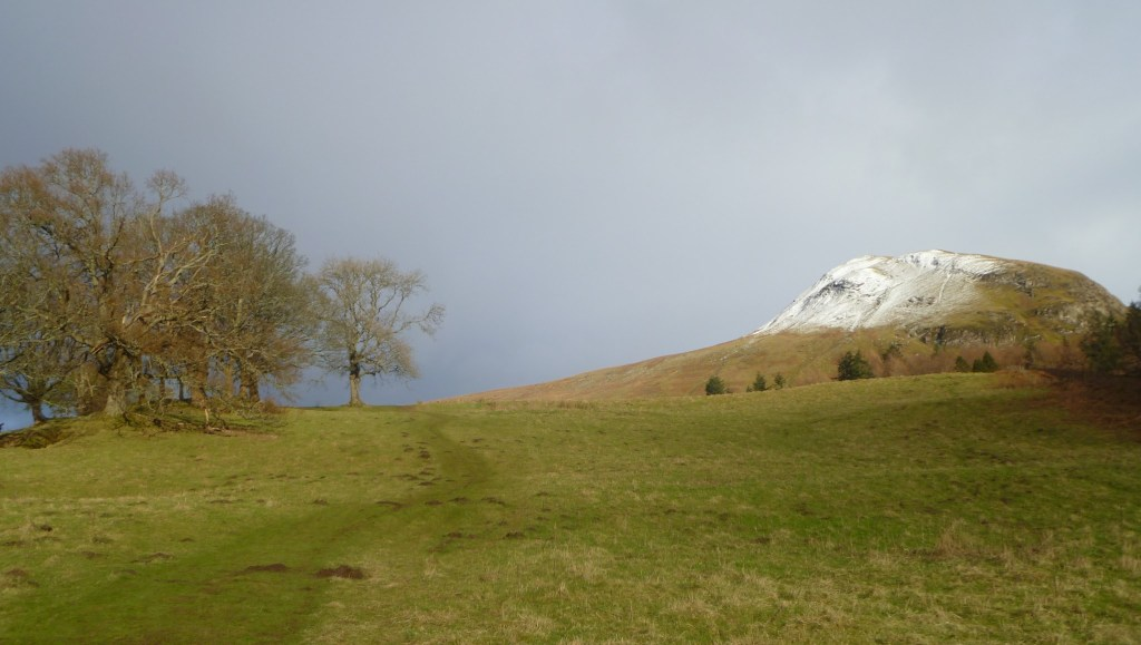 Snow on Earls Seat, Glengoyne