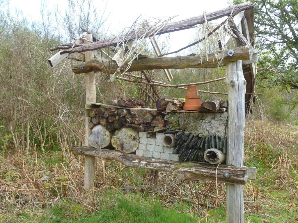 Insect Hotel within the Cashel Native Forest
