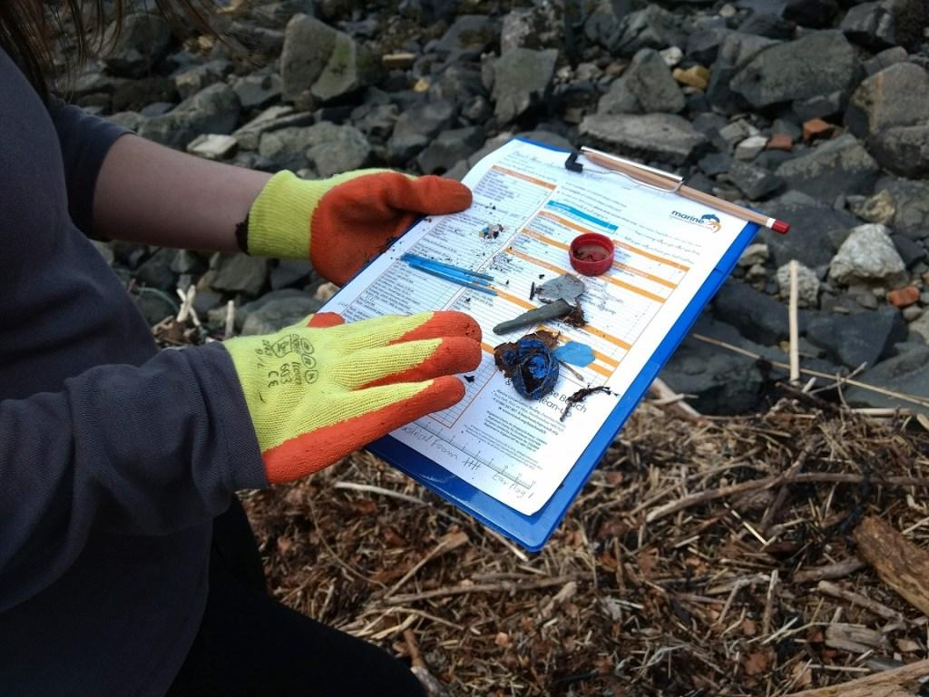 Beach Clean Survey during Shore You Care
