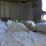 Sideways Sleeper