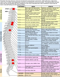 Essential oils frequency chart also timiznceptzmusic rh