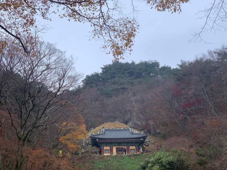 a small Buddhist temple building up above nestled among fall foliage Gyeongju travel guide.