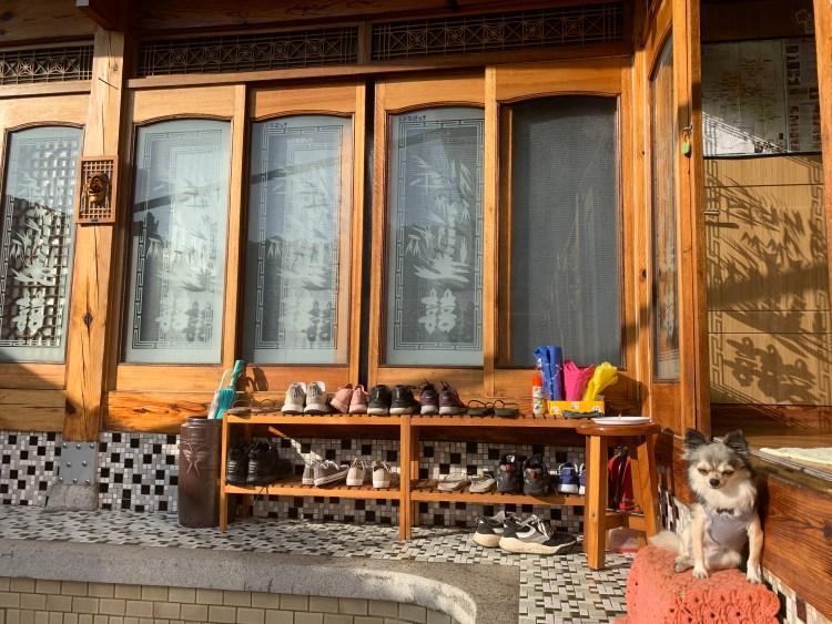 Hanok house with small dog