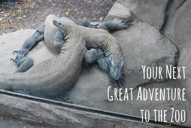 What's your summer adventure? Get a free kid's ticket to an AZA zoo or aquarium with @Frito-Lay #ad | The TipToe Fairy
