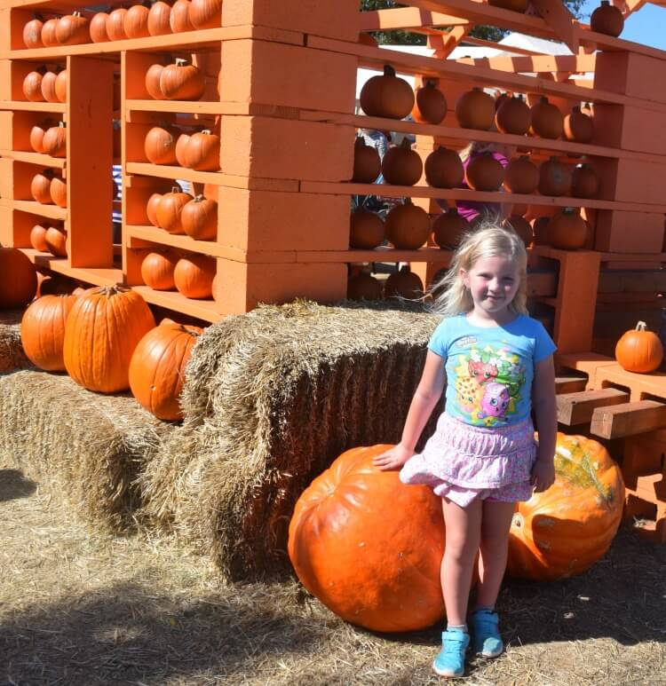 See our road trip to the pumpkin patch! #ExtendTheTrip! @gracobaby #sponsored
