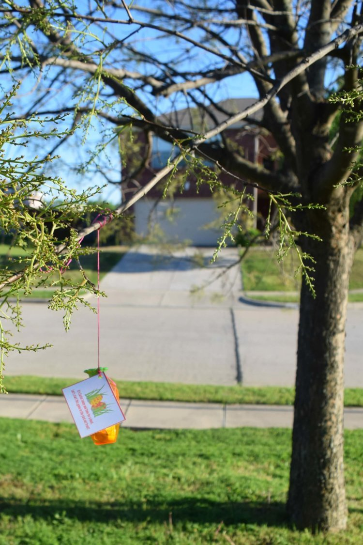 Hang an Easter egg with a clue from the tree!