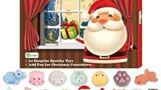 Squishy Toys Advent Calendar