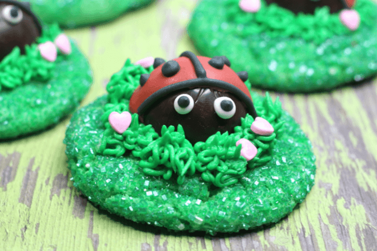 LadyBug Love Cookies