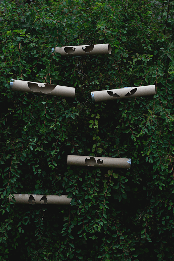 The paper towel holders in the bushes.