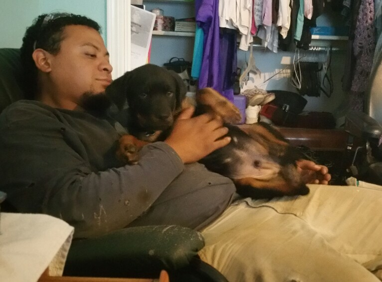 German Rottweiler, Simba and owner Sean.