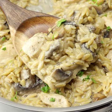 Orzo, chicken, and mushrooms in a creamy sauce.