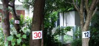 Asagaya Housing danchi Numbered Trees