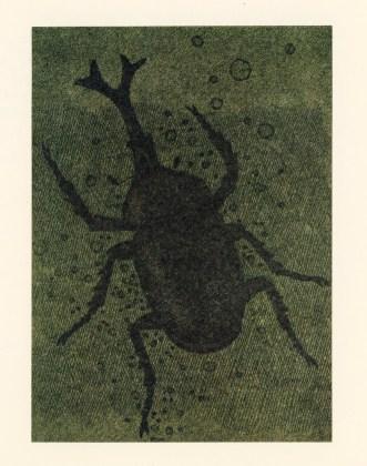 A fool's life Akutagaya Ryohei Tanaka beetle
