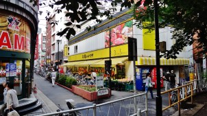 Toritsudaigaku station area shopping trees