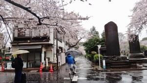 Yanaka cemetery Tokyo rain bikes