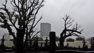 Yanaka cemetery Tokyo rain dark