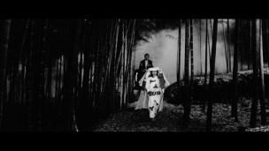 Black Cat Kuro neko bamboo night walk 2