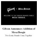 Gibson buys Mesa Boogie! WOW!