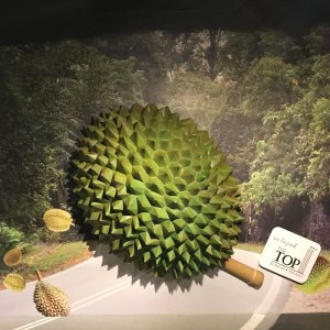 Durian-The-King-of-Fruits-Attraction