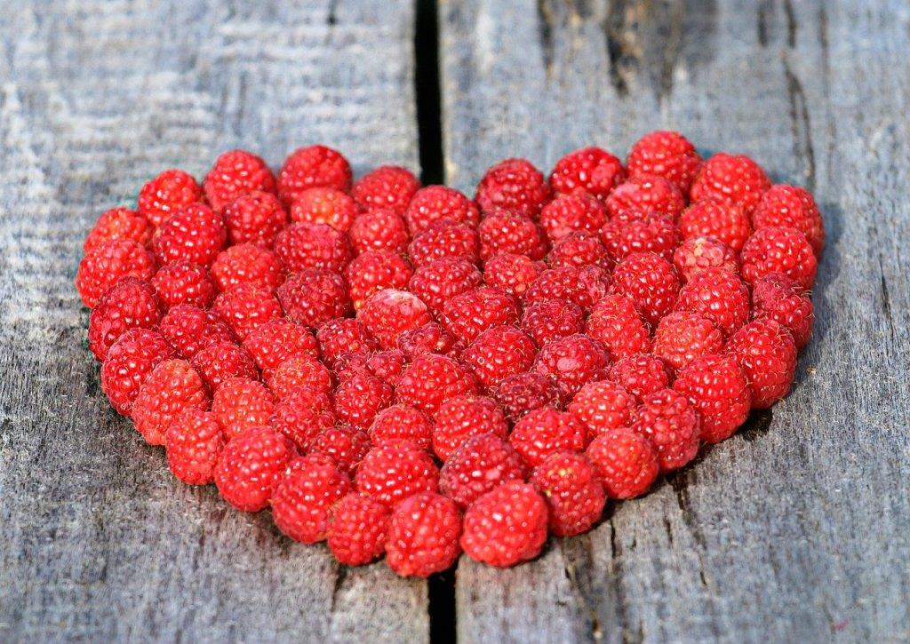 best supplement for heart health, best heart health supplement, what is the best supplement for heart health, healthy heart supplement