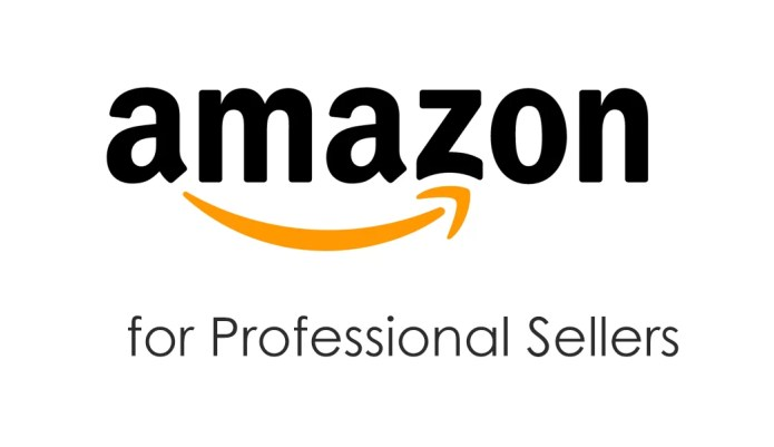 Best Businesses to do on Amazon