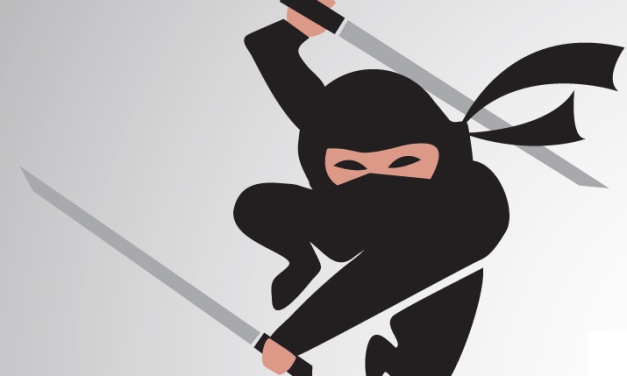Trademark Ninja Services