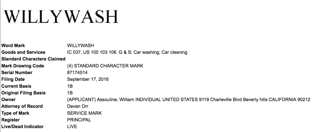 willywash-its-not-what-you-think-probably-willywash-trademark