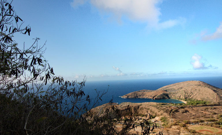 The Koko Head Crater Hike Photo8