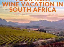 Spend Your Next Wine Vacation In South Africa