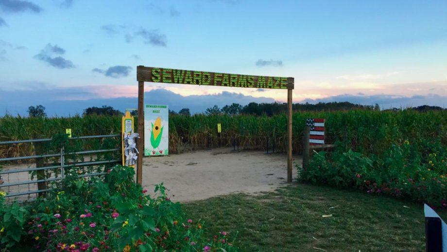 Sewards Farms Maze