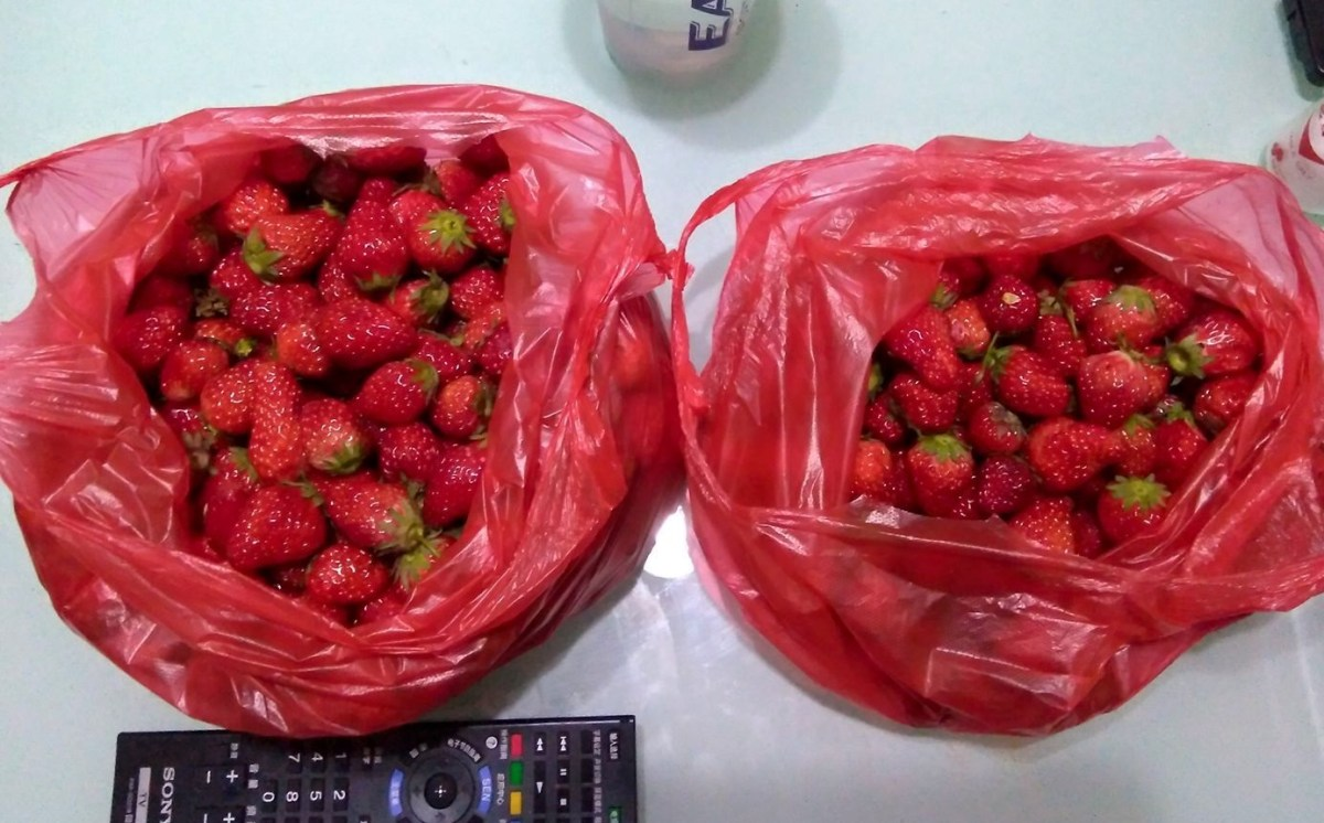 Strawberry Shopping in China