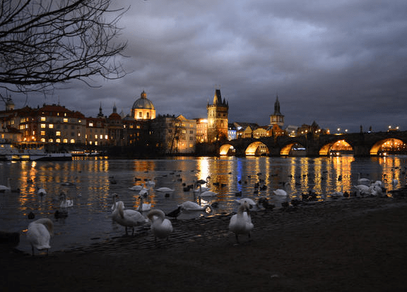 15 Breathtaking Photos of the Charles Bridge