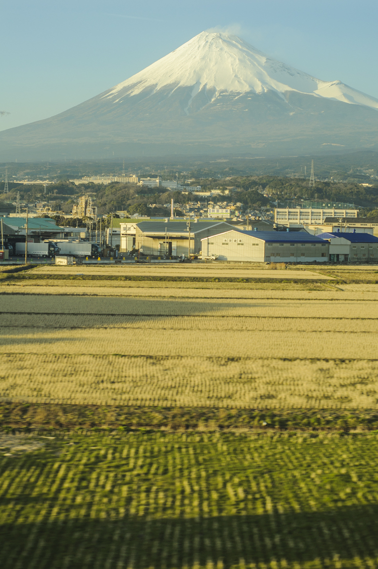 Train to Tokyo, Japan Travel (Guest Post)