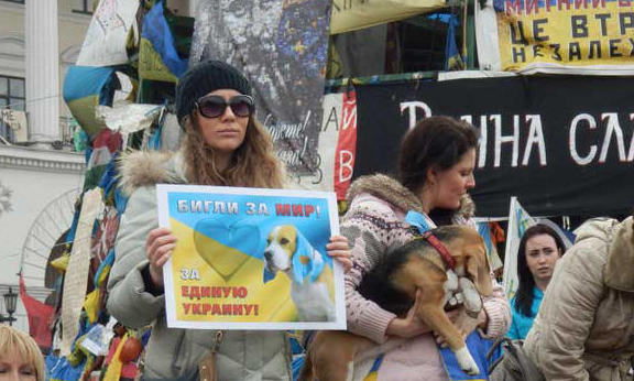 Beagles for Peace – War in Ukraine