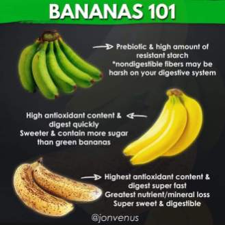 , Plant-Based Eating Tips: Infographics