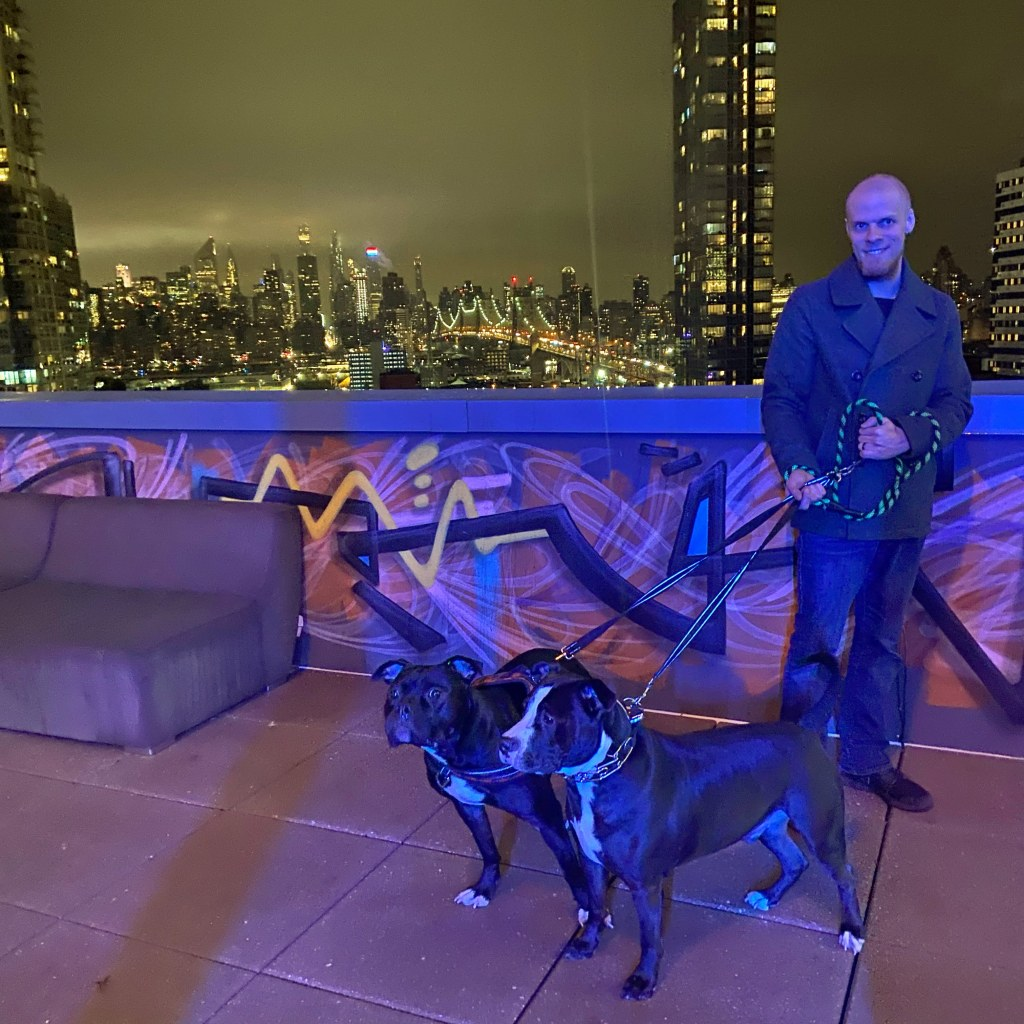 Dogs in a Hotel, Dogs in a Hotel: Our Experience with Smiblo, The Travel Bug Bite