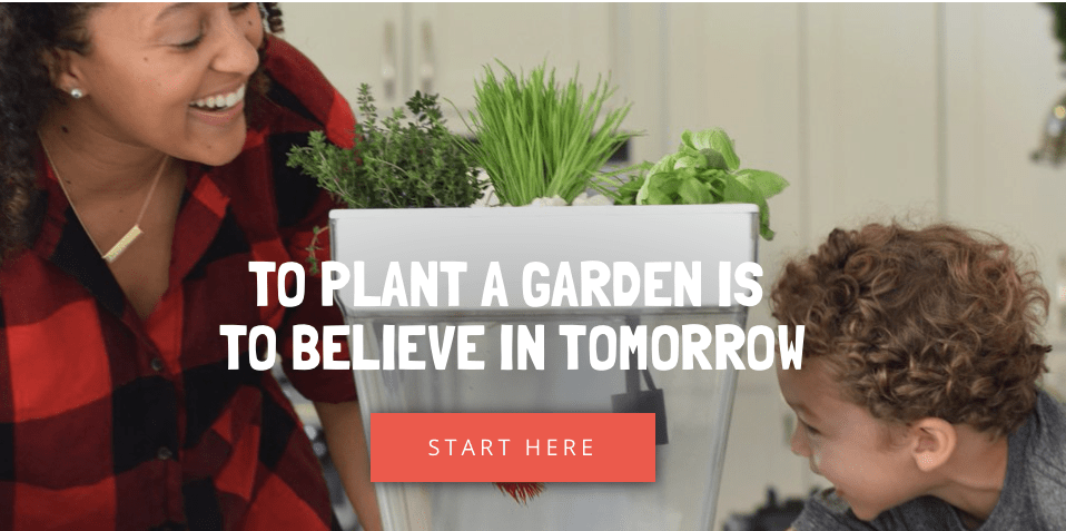 Back to the Roots, Back to the Roots: Grow Your Own Food Kits, The Travel Bug Bite