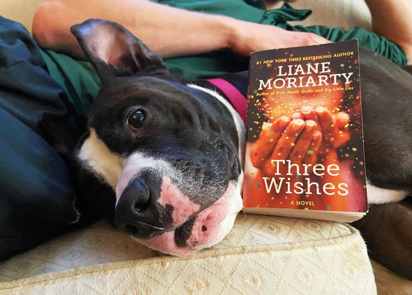 Three Wishes, Three Wishes by Liane Moriarty: Book Review, The Travel Bug Bite, The Travel Bug Bite