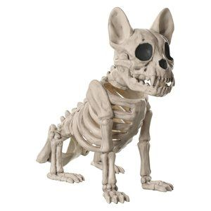 Anatomically Incorrect Halloween Decorations, 7 Anatomically Incorrect Halloween Decorations, The Travel Bug Bite