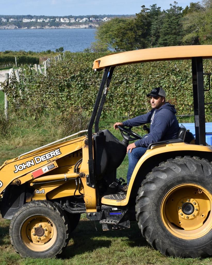 Gooseneck Vineyards, Gooseneck Vineyards: Wickford, Rhode Island, The Travel Bug Bite
