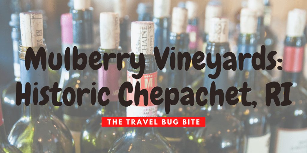 Mulberry Vineyards, Mulberry Vineyards: Historic Chepachet, RI, The Travel Bug Bite