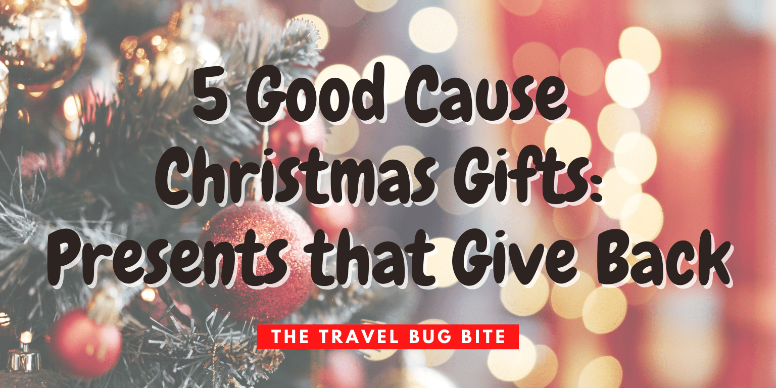 Good Cause Christmas Gifts, 5 Good Cause Christmas Gifts: Presents that Give Back, Travel, Reviews, Bugs & More!