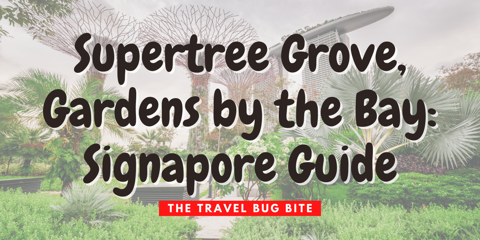 Supertree Grove, Supertree Grove, Gardens by the Bay: Signapore Guide, The Travel Bug Bite
