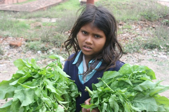 Girl selling leaves to feed the deers
