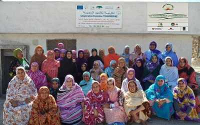 A Visit to The Tighanimine Womens Fairtrade Argan Oil Cooperative